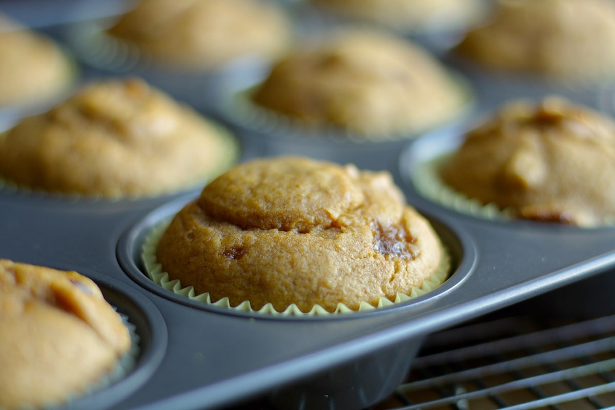 Pumpkin Muffin Recipe with Cranberries and Walnuts